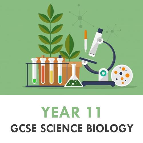 Science Year 11 - Biol