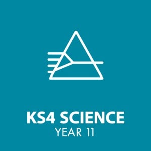 Sci Year 11 icon